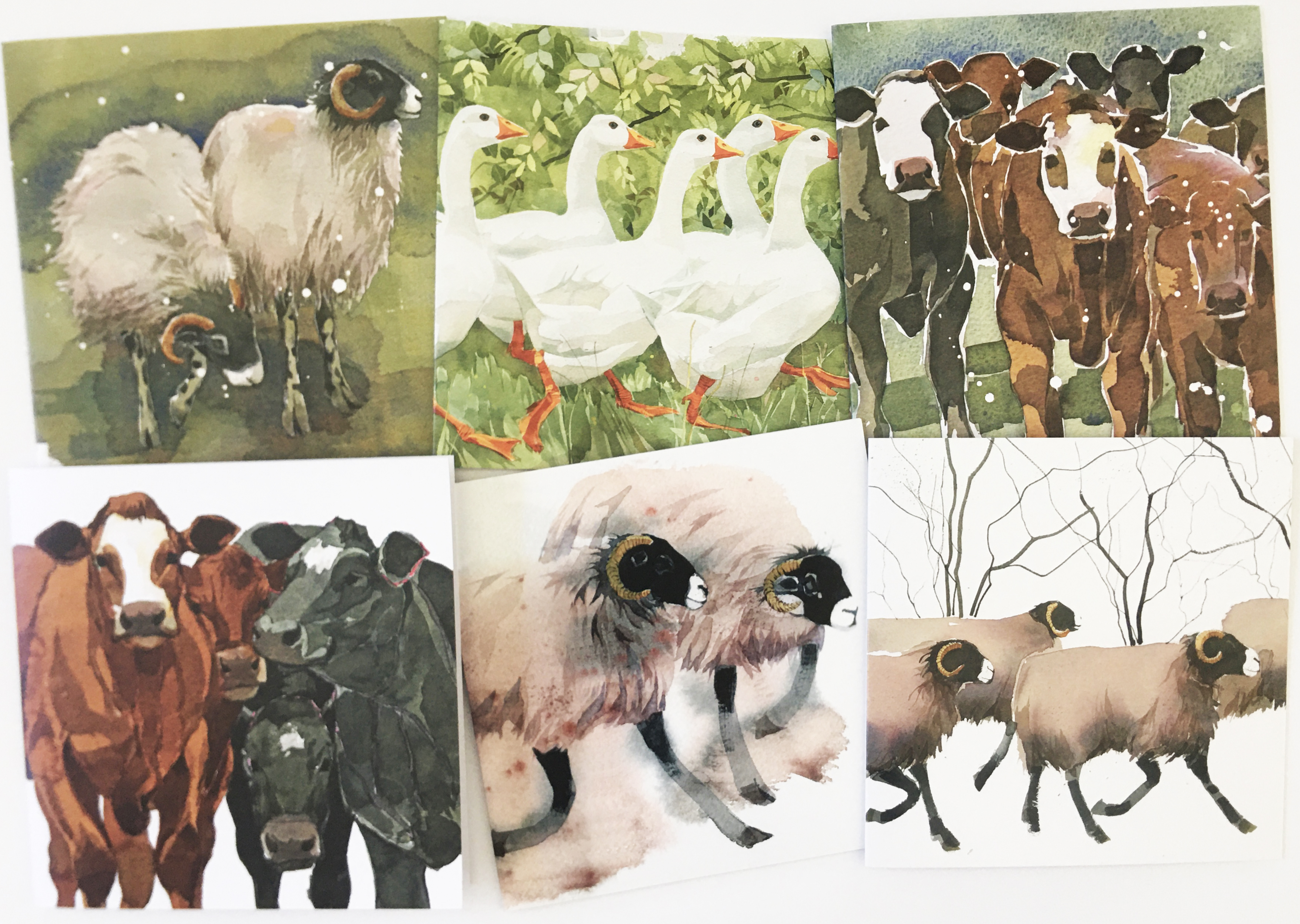 On The Farm - mixed pack image