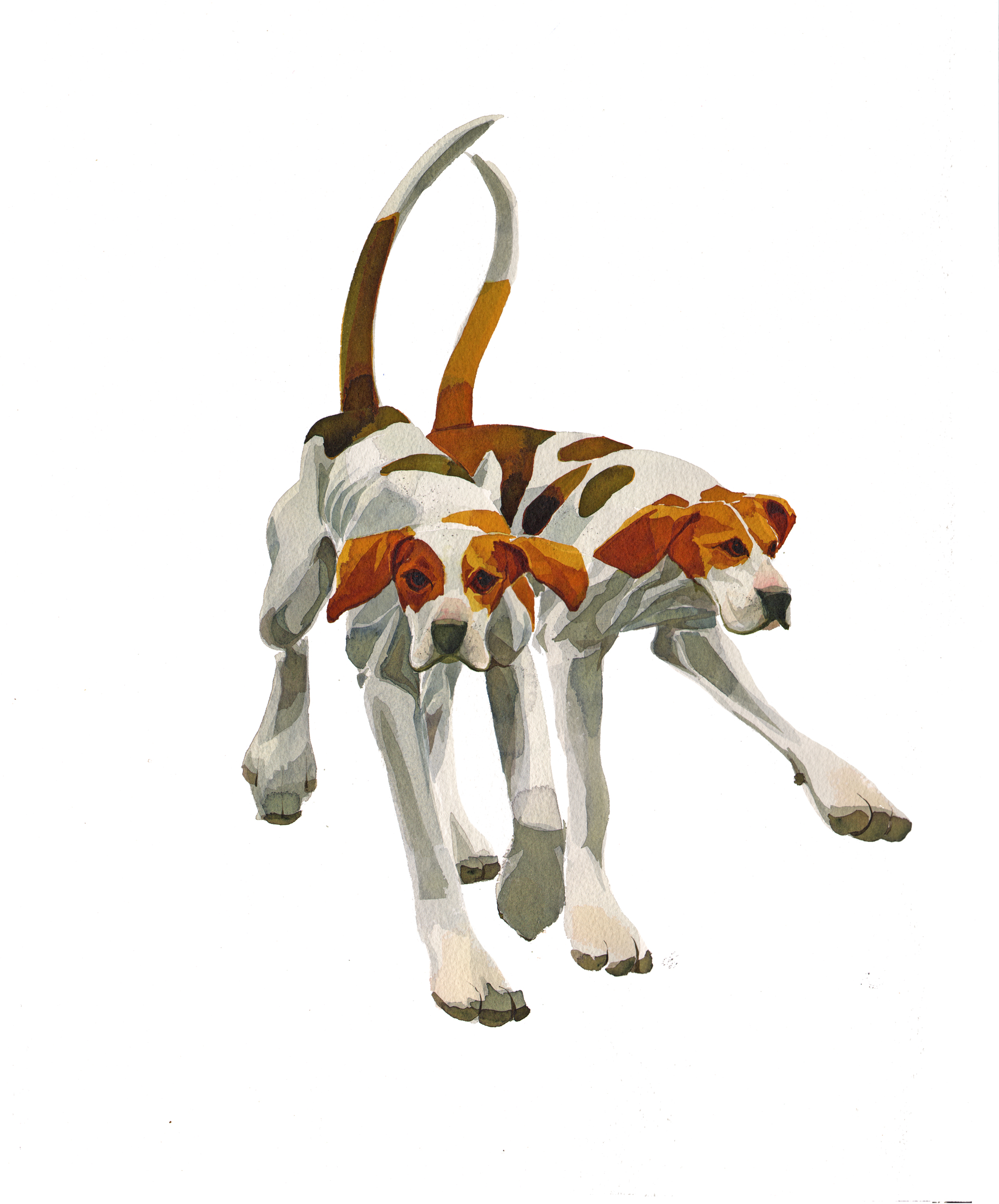 Foxhound Couple image
