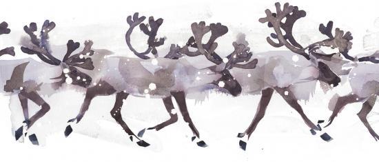 Cairngorm Reindeer L6 image