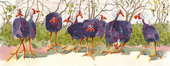Guinea Fowl Gathering image