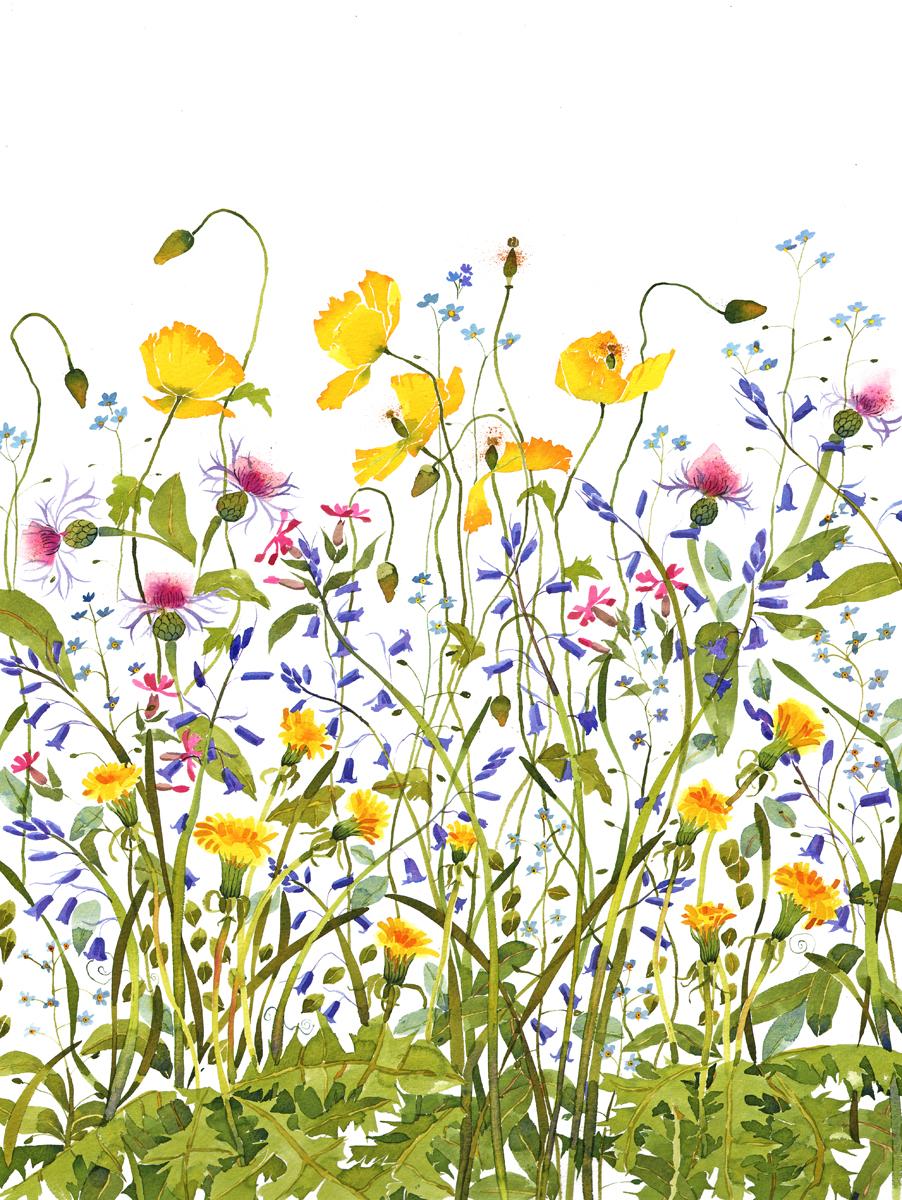 Spring Flowers I image
