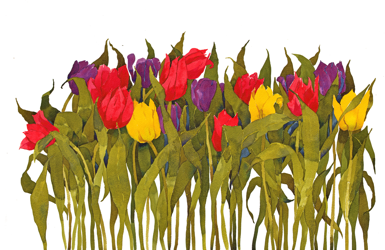 Riot of colour, Tulips II,SOLD New image
