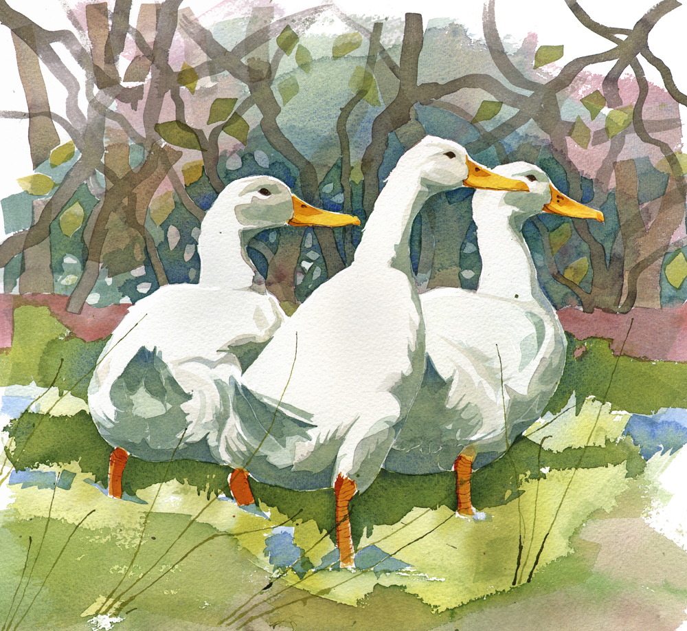 Three Ducks image