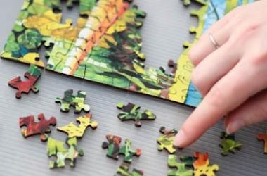Jigsaws art