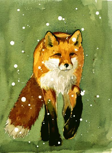 Fox, Snow S1 image