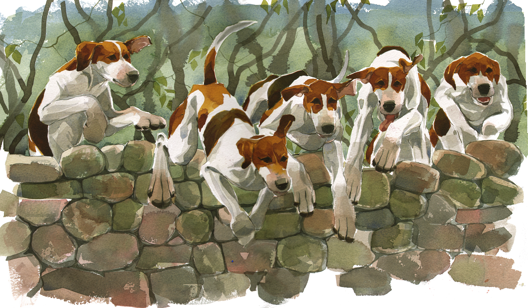 Five hounds over image