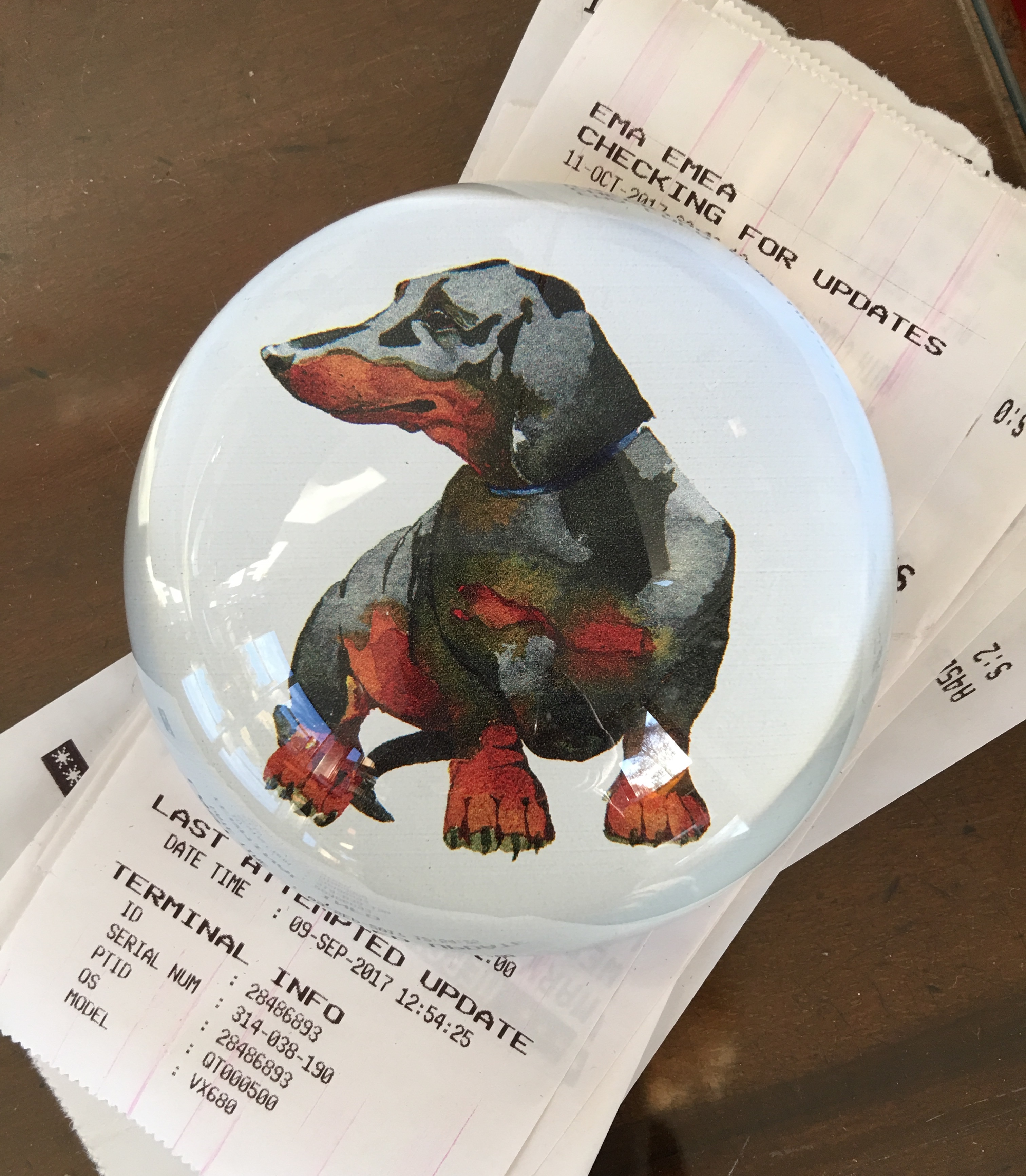 Paperweight glass dome , Dorothy Dachshund image