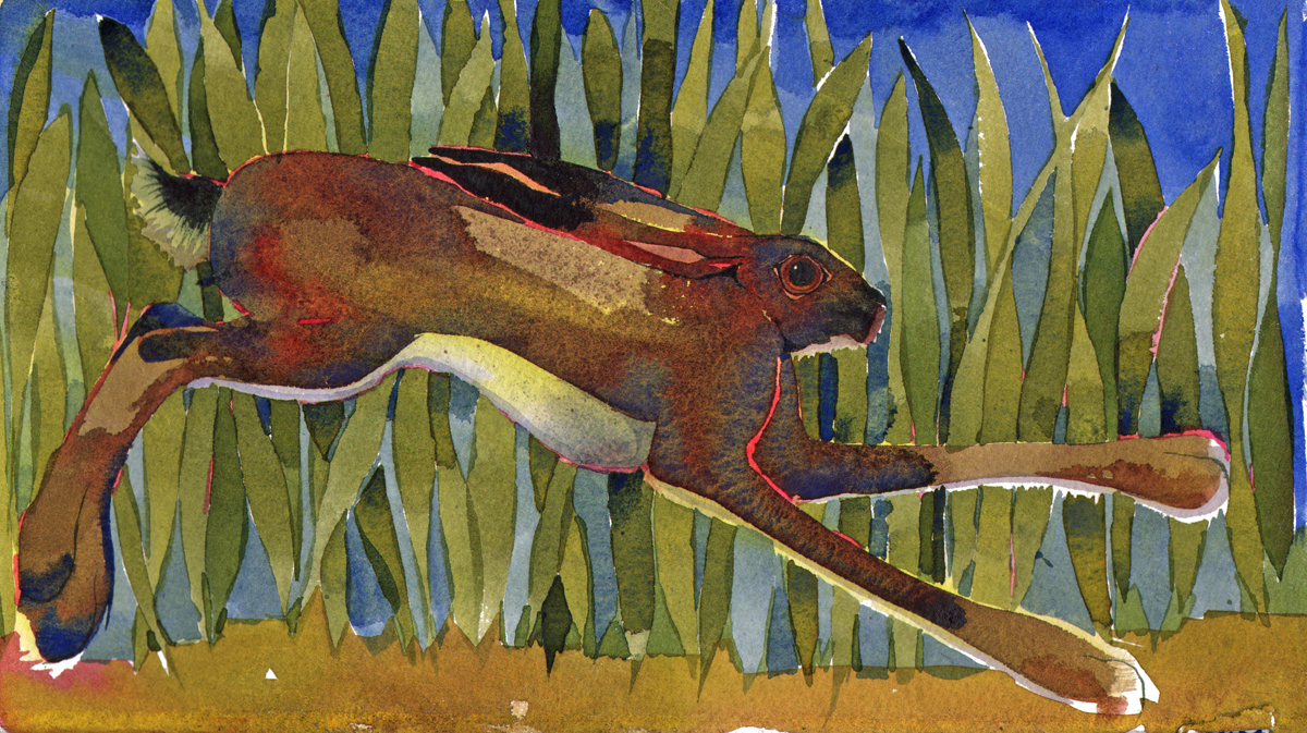 Running Hare SOLD image