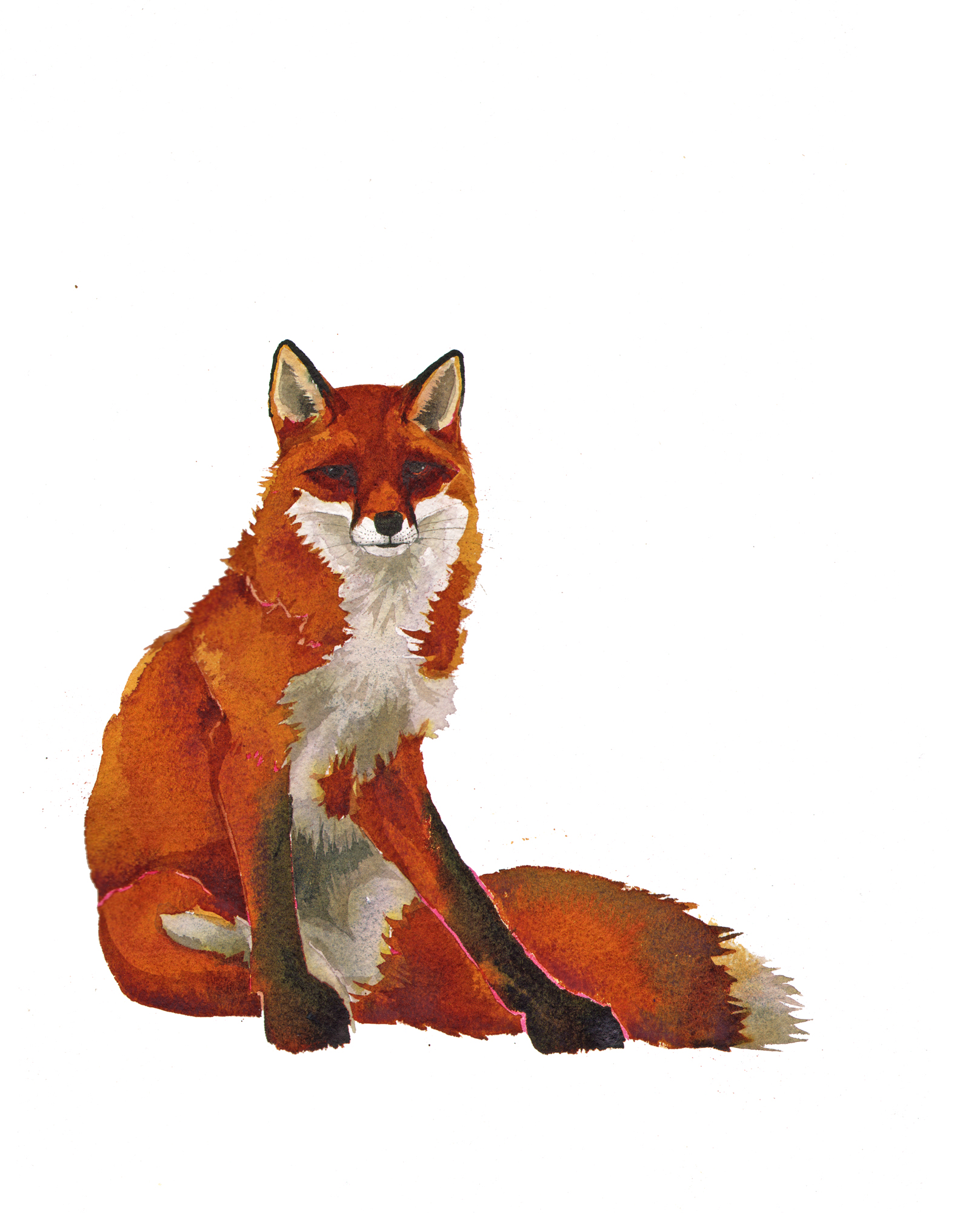 Red Fox, SOLD image