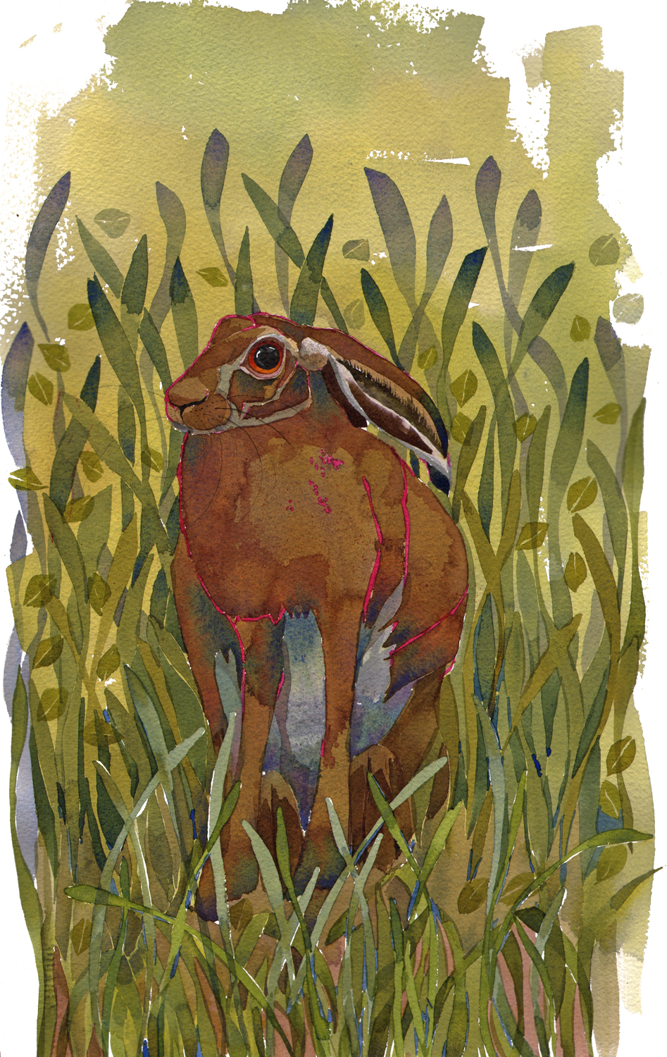 Sitting Hare SOLD image