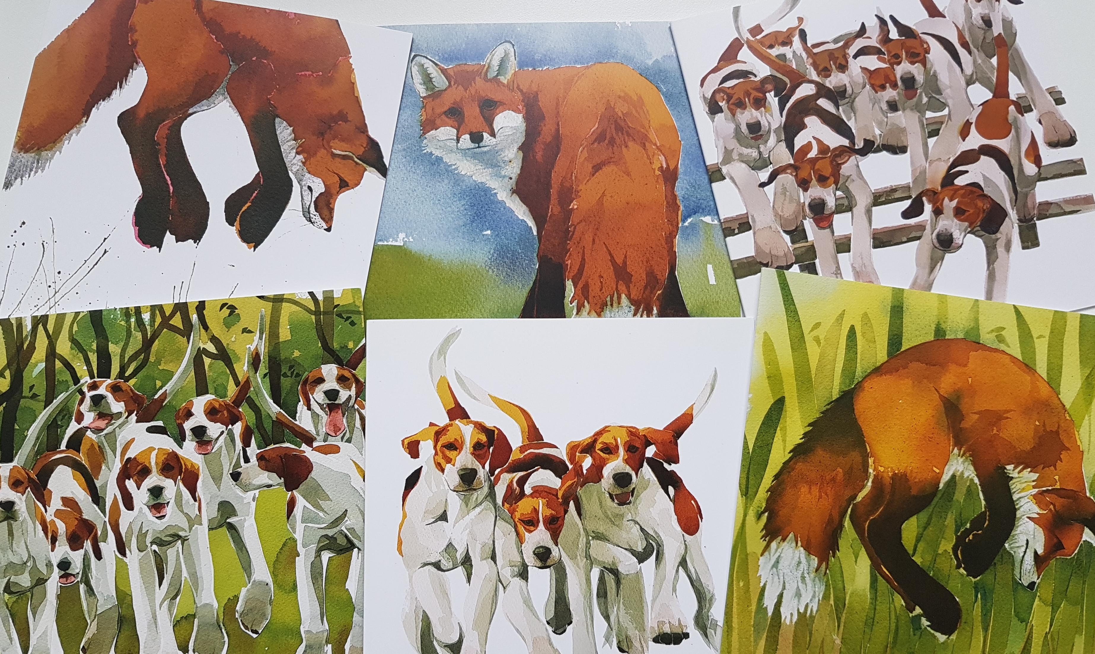 Fox & Hounds- mixed pack image