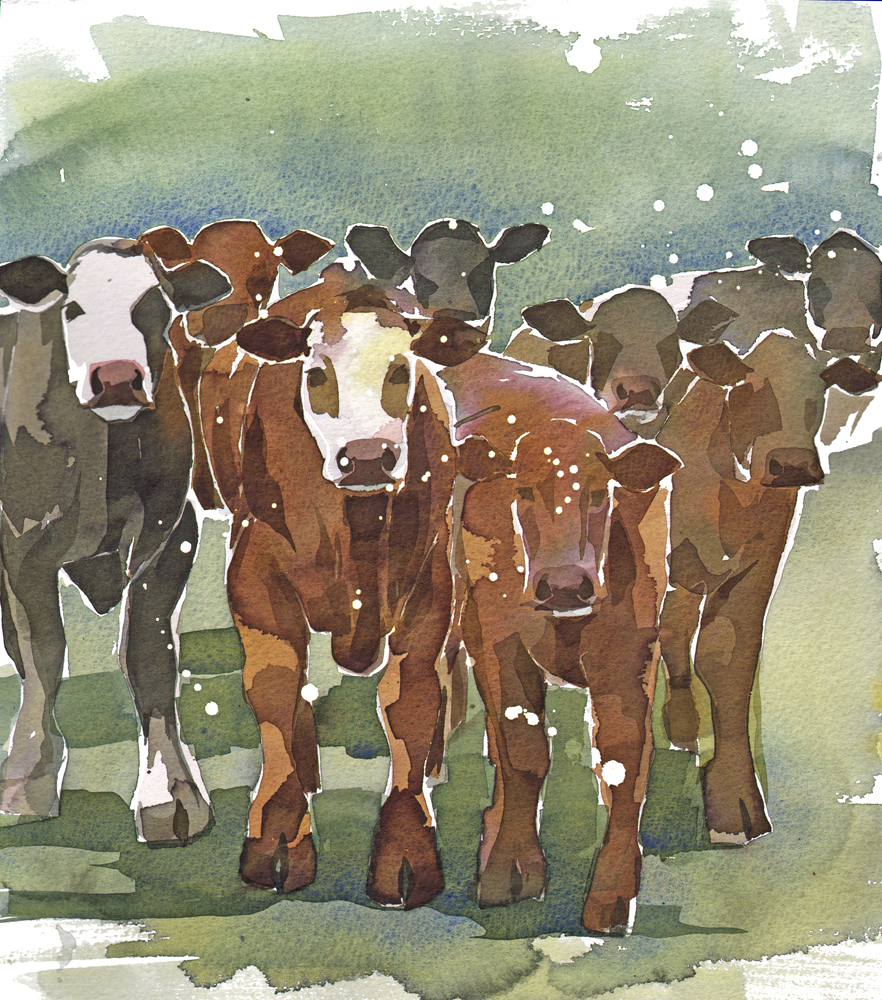 Cattle, Snow SOLD image