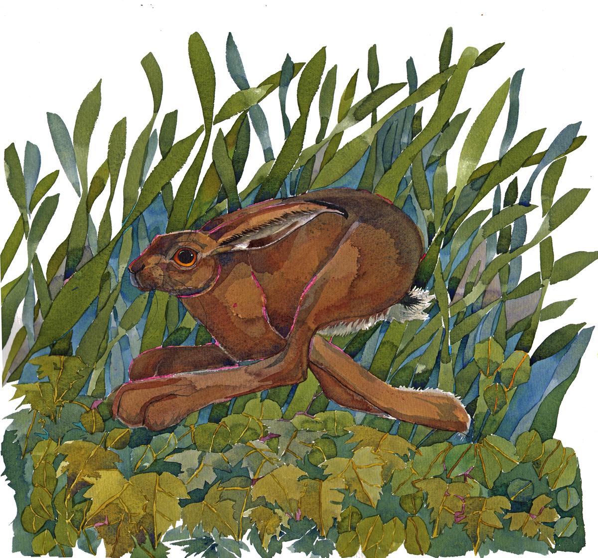 Running Hare I image