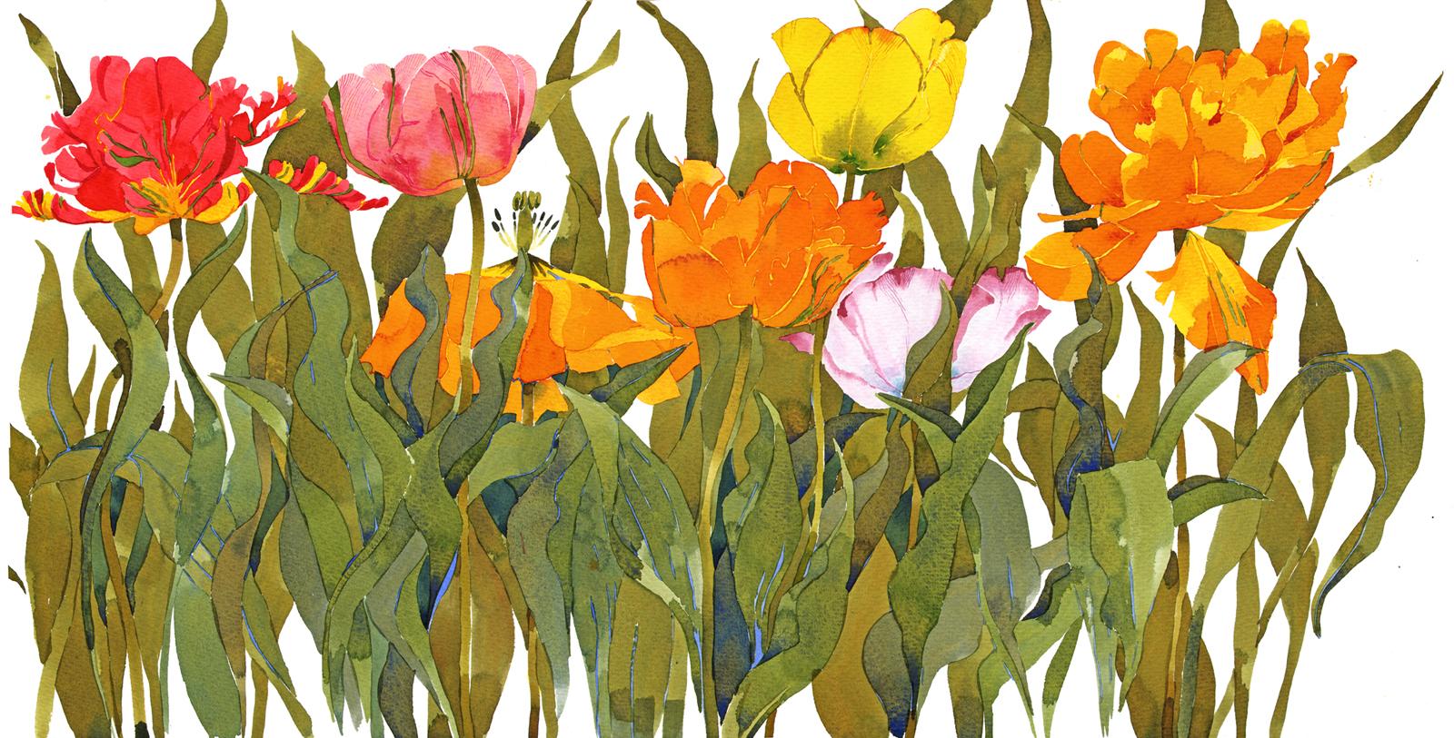 Flouncy Tulips SOLD image