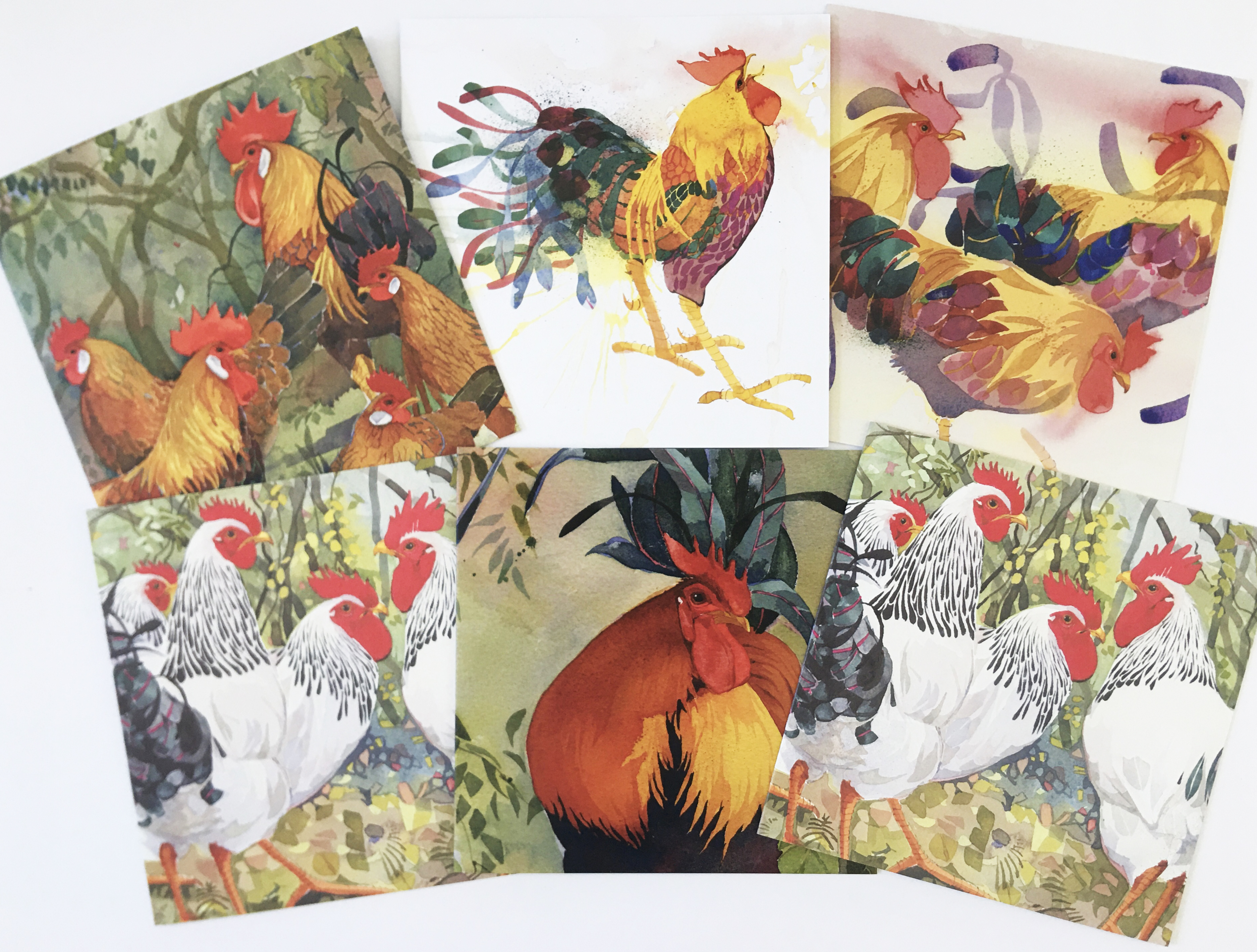 Chickens - mixed pack image
