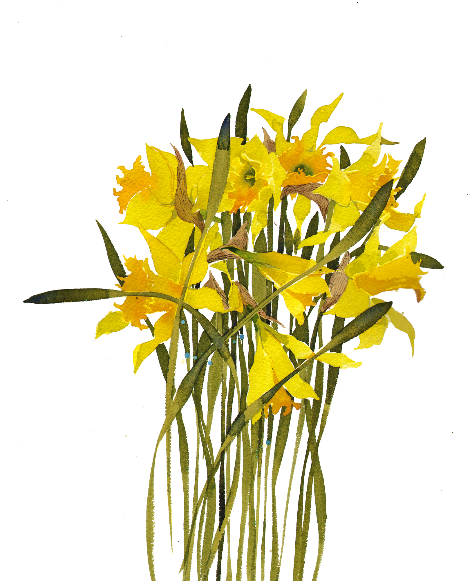 Daffodils I, New sold image