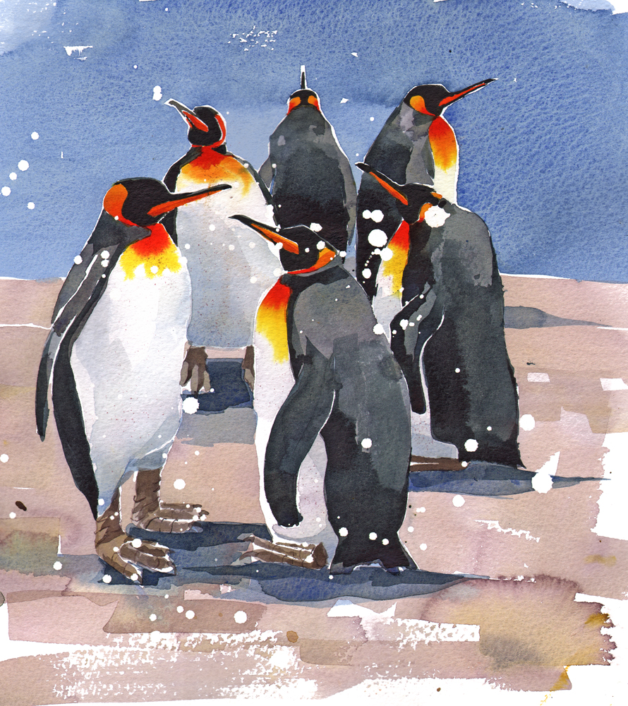 King Penguins image