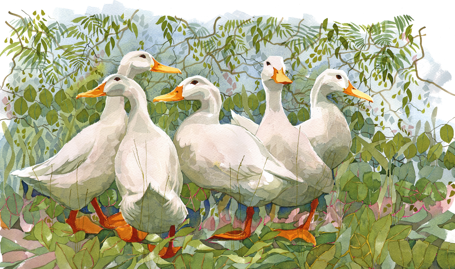 Five Ducks SOLD image