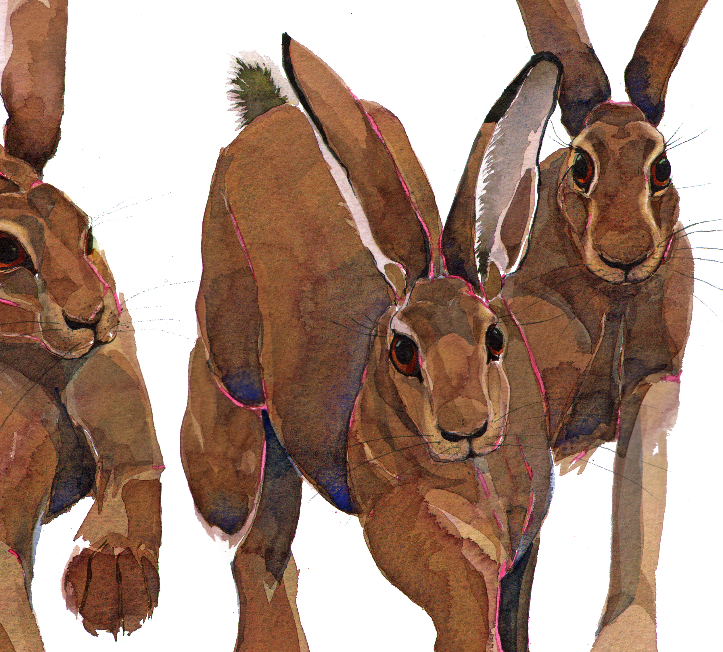 Three Hares SOLD image