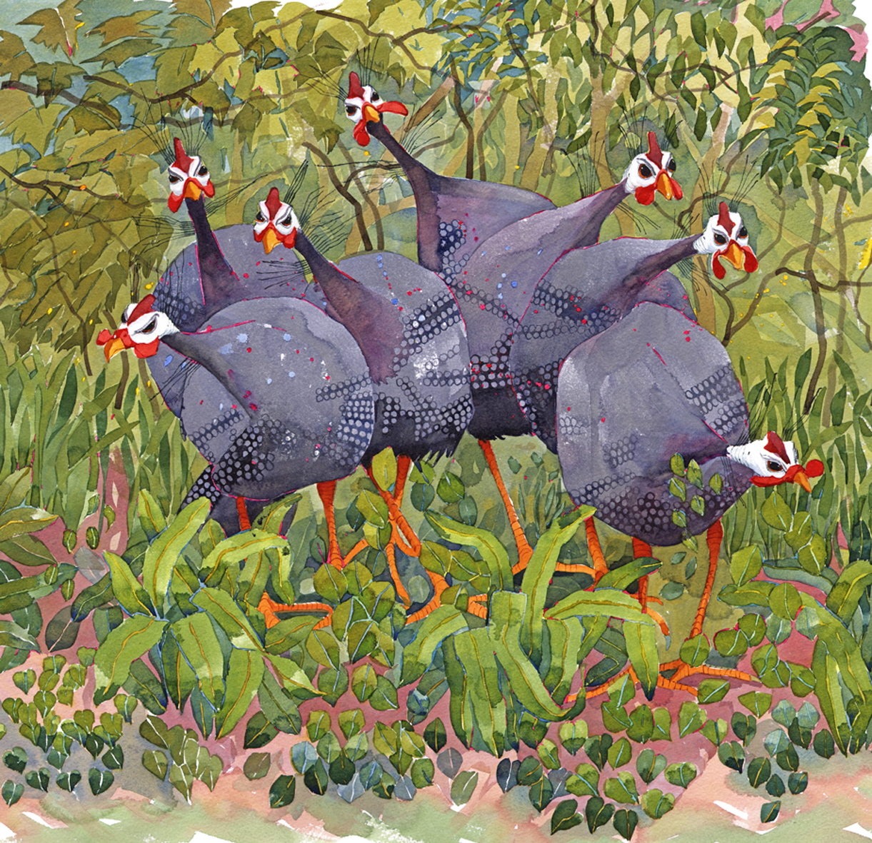 Confused Guinea Fowl SOLD image