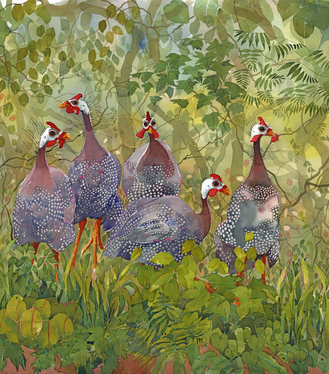 Gawping Guinea Fowl SOLD image
