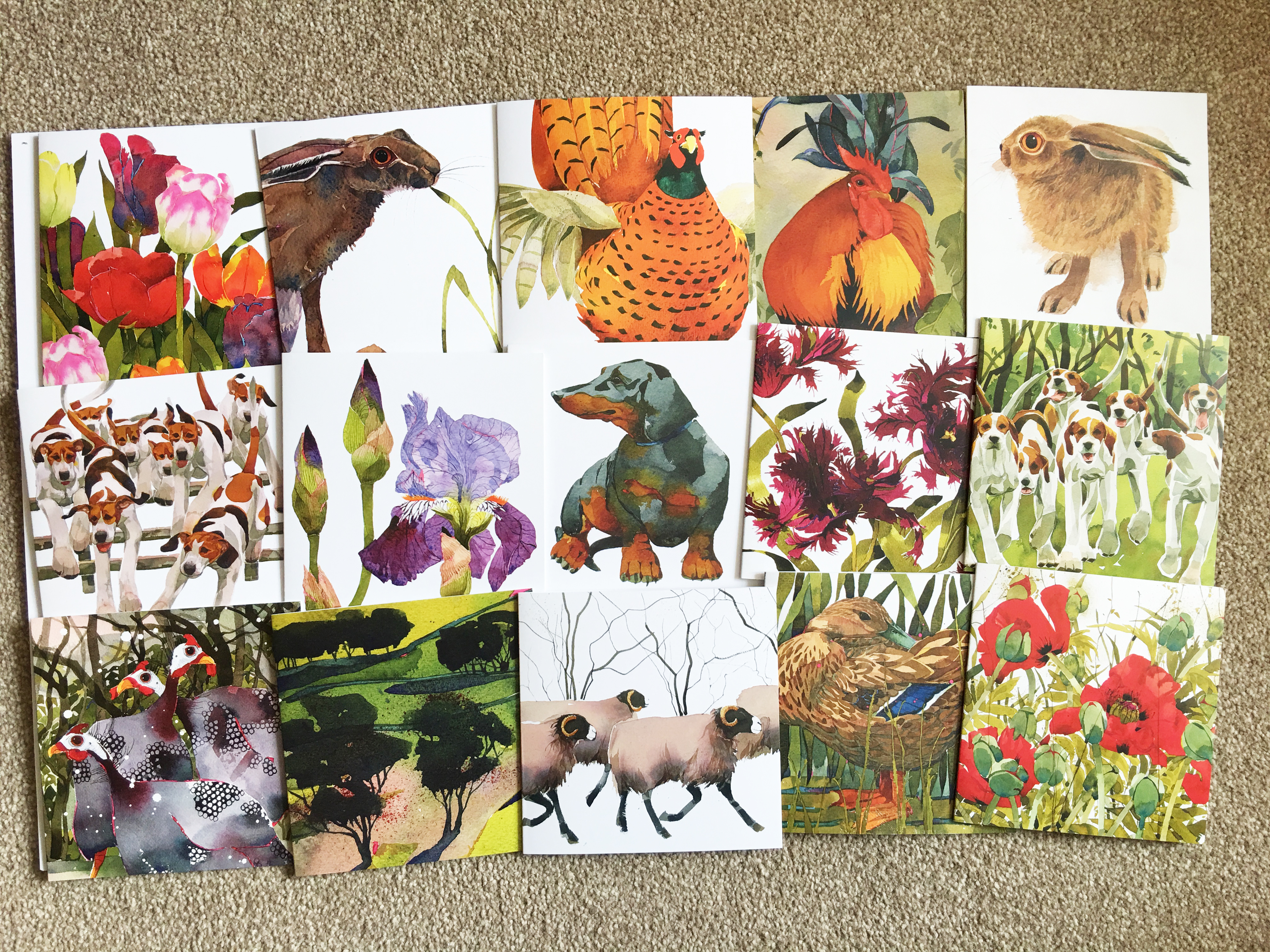 Cards- Mary Ann's Favourites 'Year Round' pack of 20 image