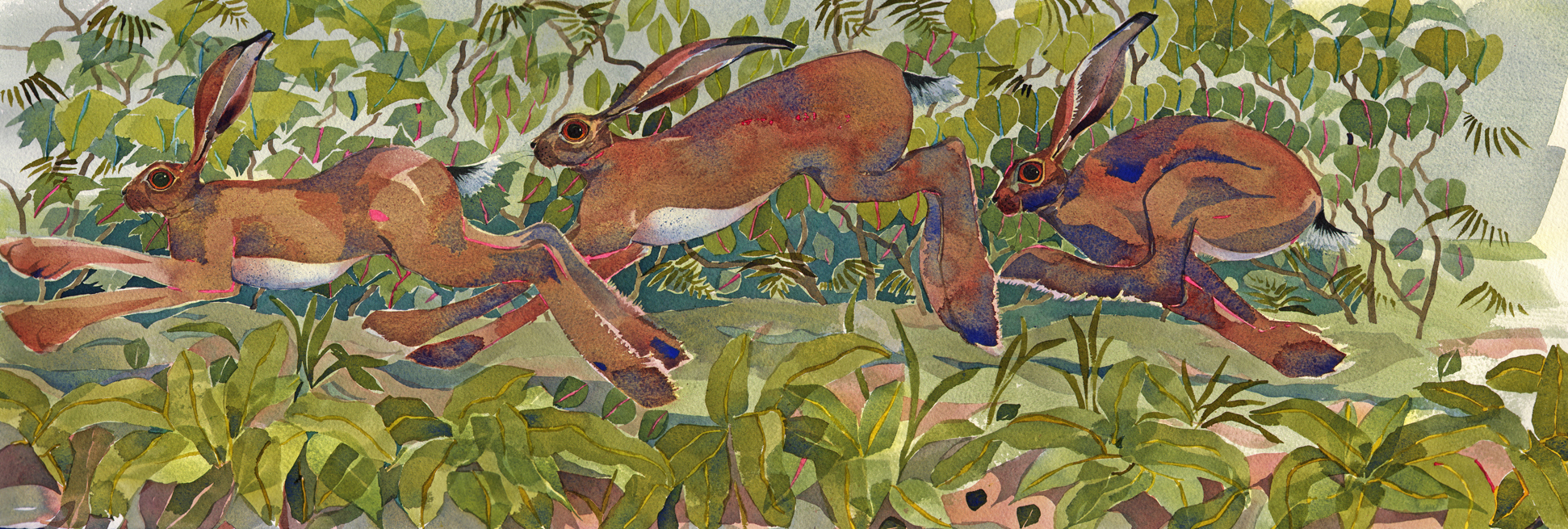 Hare Play   SOLD image
