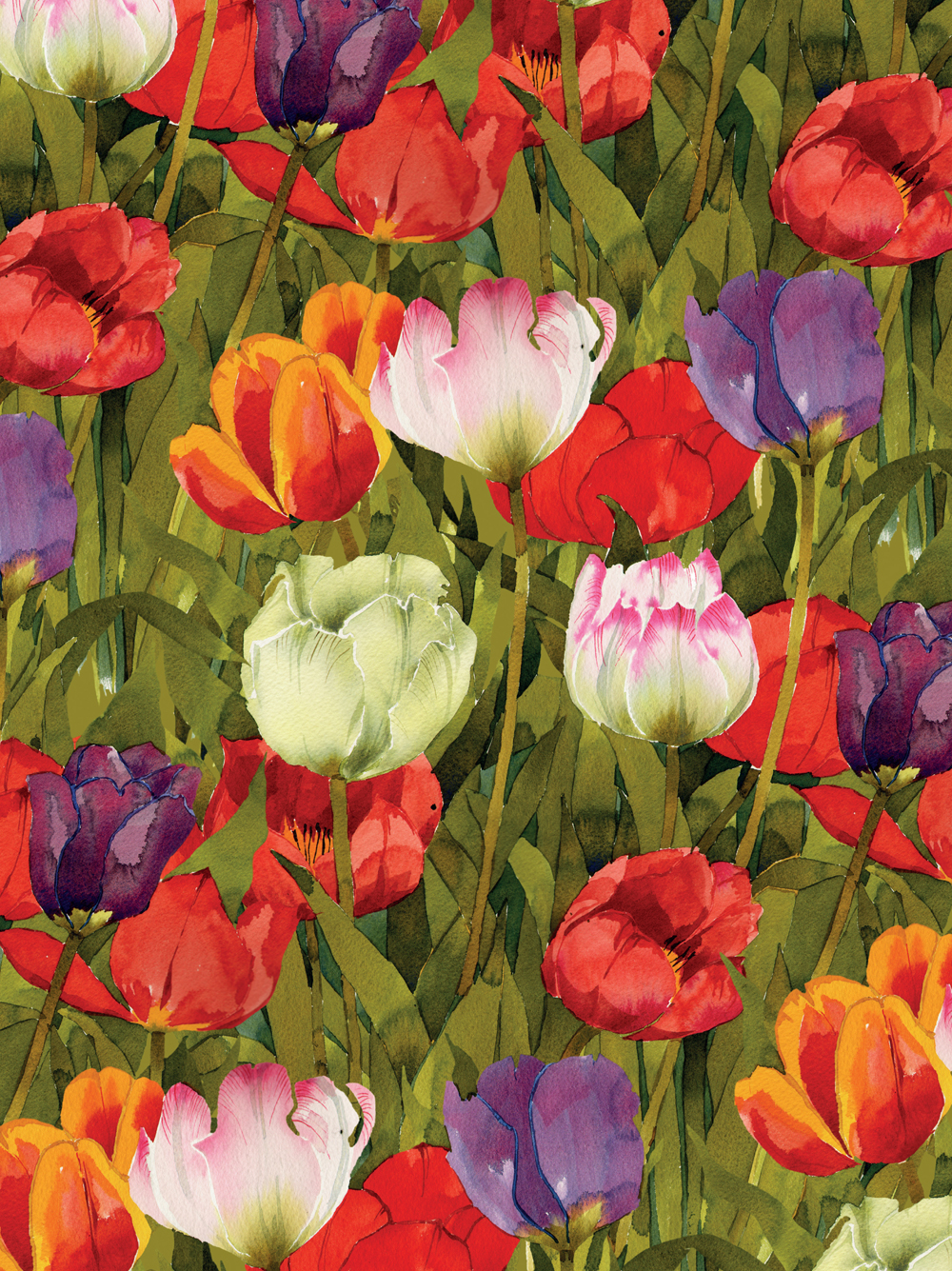 Journal, Spring Tulips image